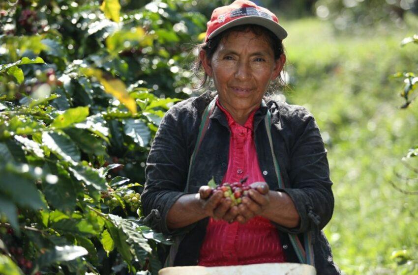 Construyendo la resiliencia de las mujeres rurales a raíz del COVID-19 -  Bilateral